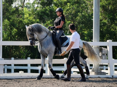 Riding Lessons 2016